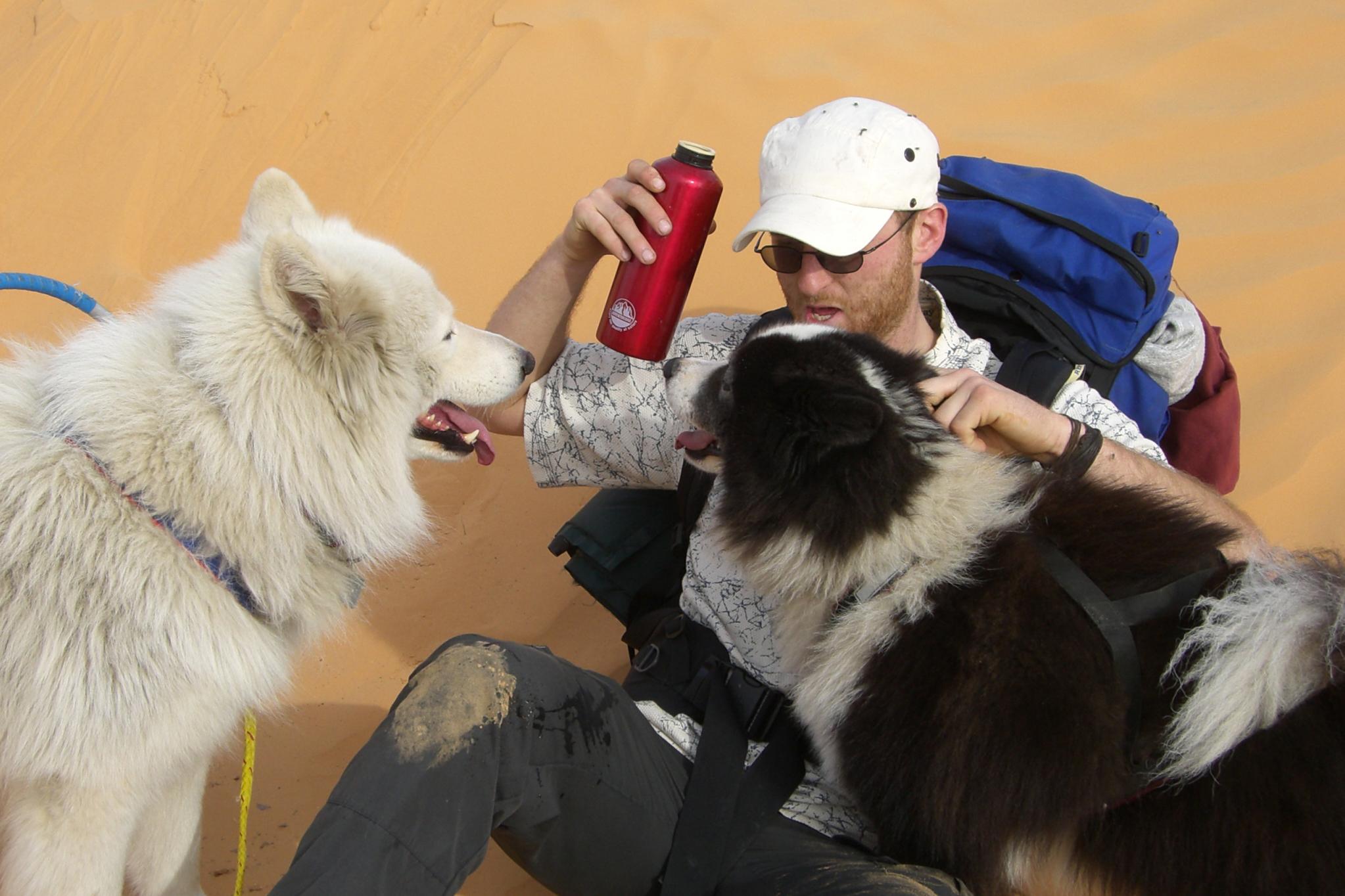 Hundeschlitten Trinkpause