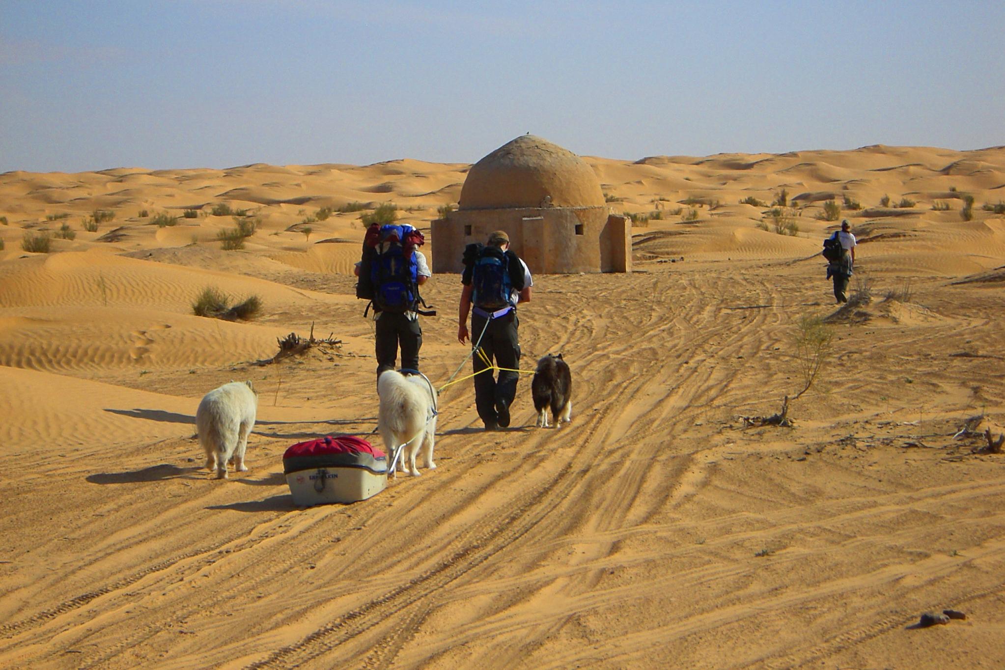 Hundeschlitten Bir Gif el Boum