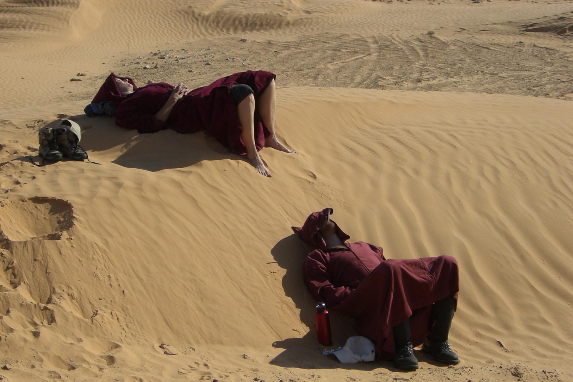 Hundeschlitten Wüste Rast