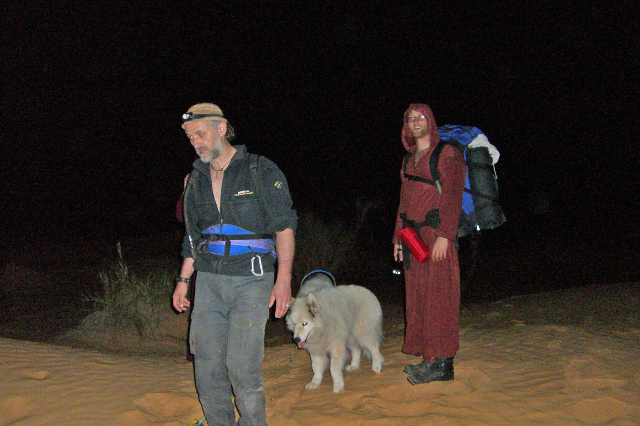 Hundeschlitten Nachtwanderung