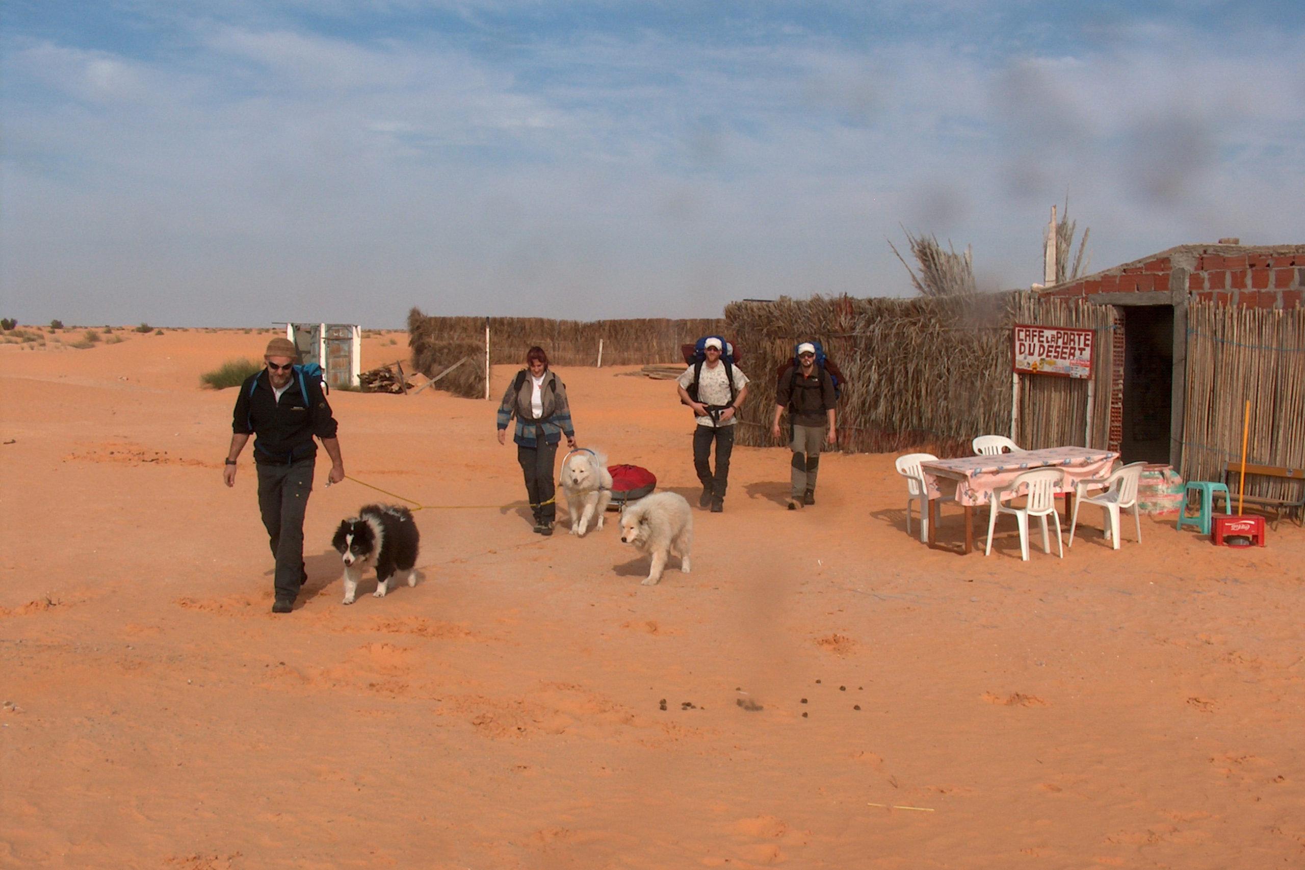 Hundeschlitten Cafe du Desert