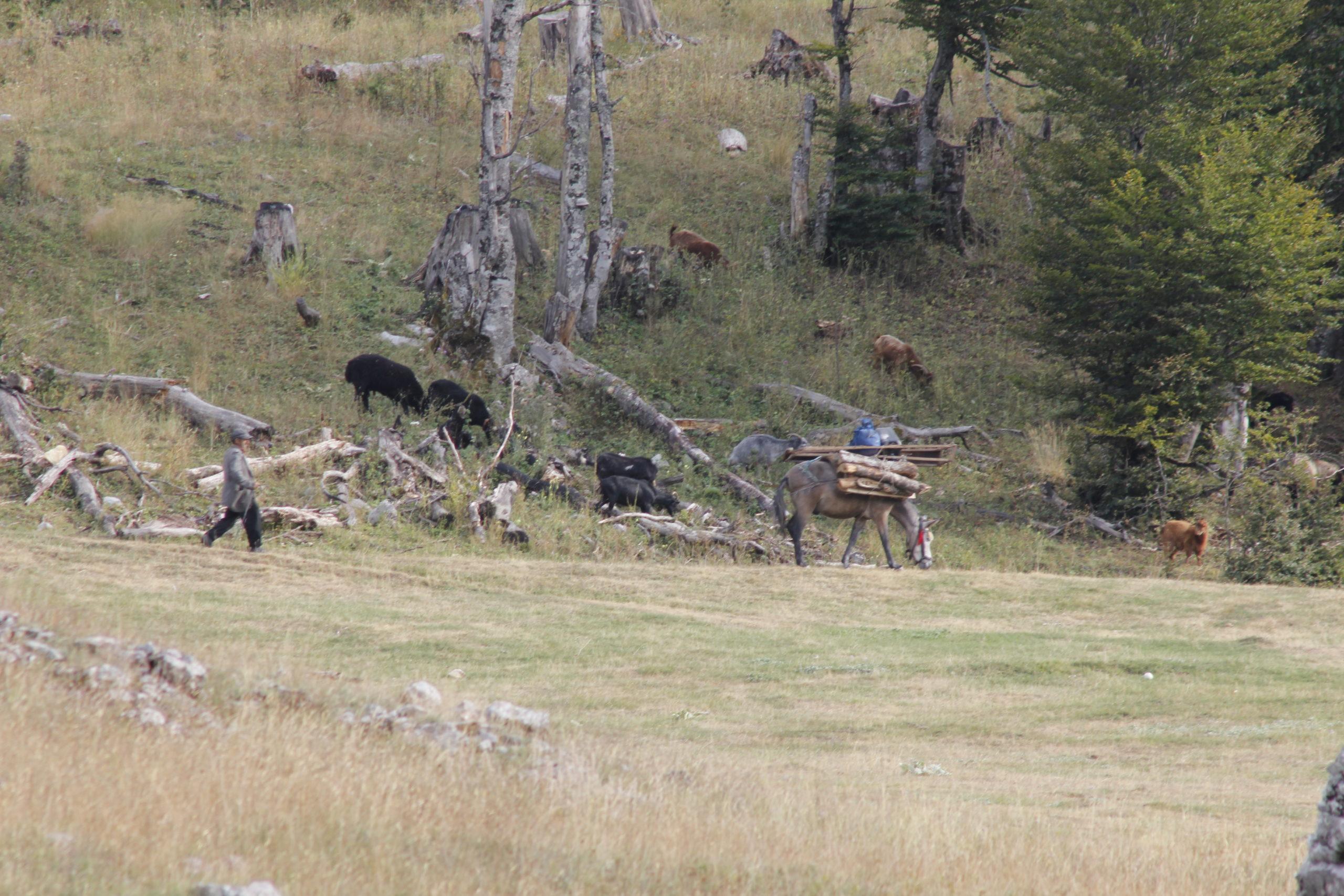 4x4 Abenteuerreise: Albanien so nah und doch so fremd 3