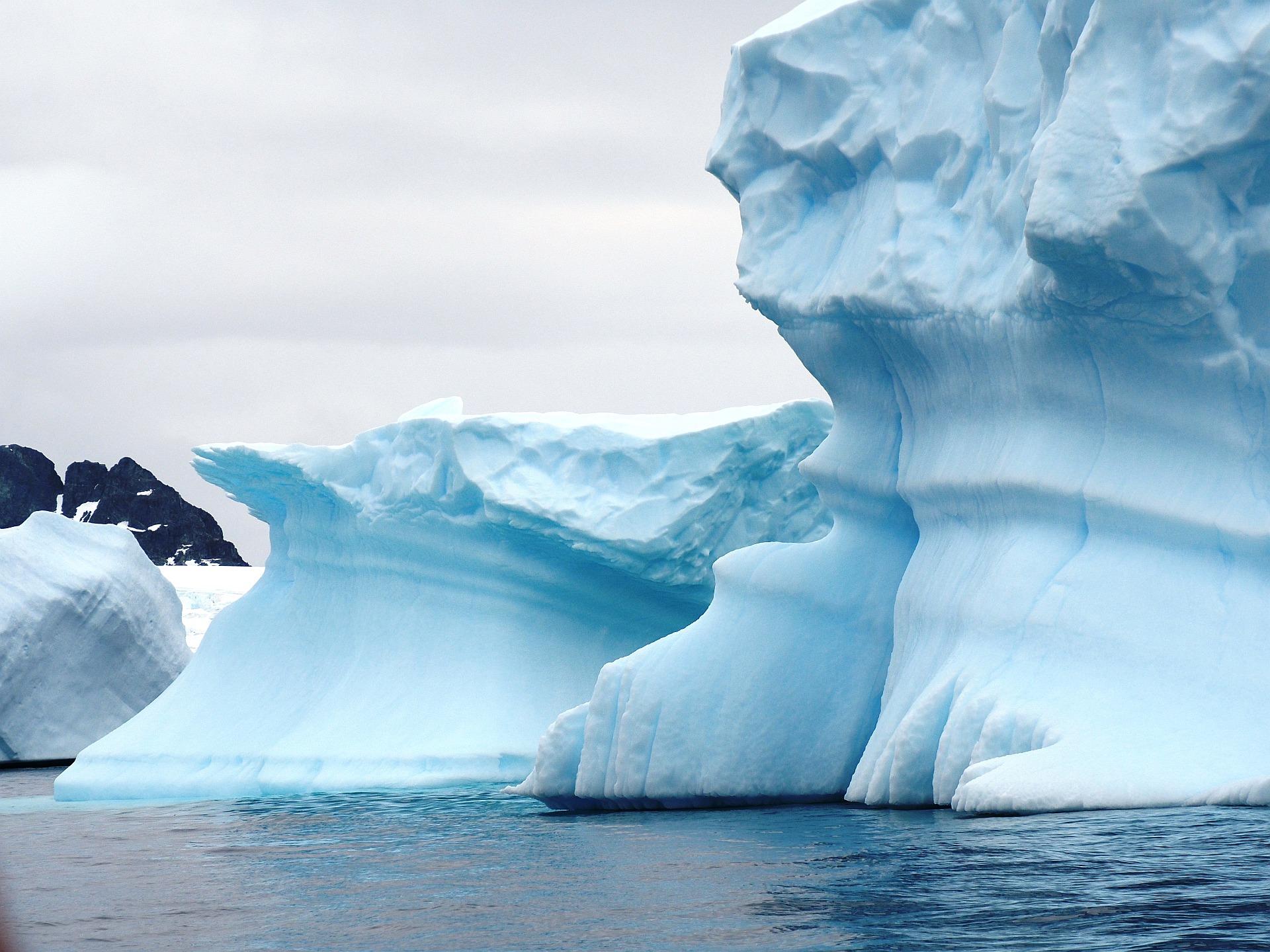 Eisberge bei Cuverville