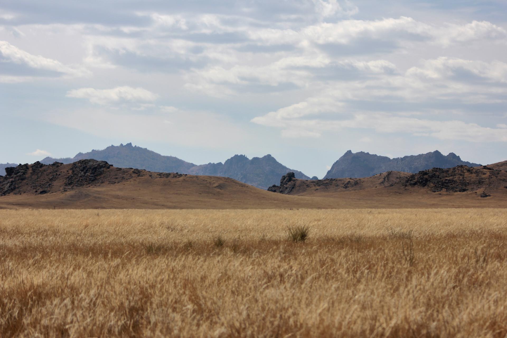 Winterweide im Norden der Mongolei