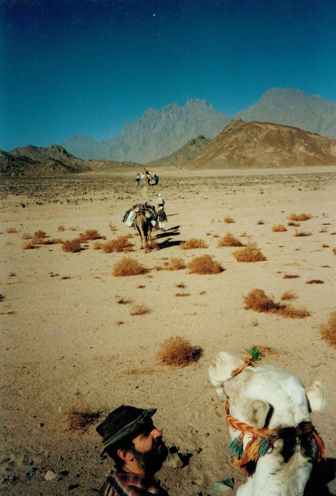Karawane in Ägypten